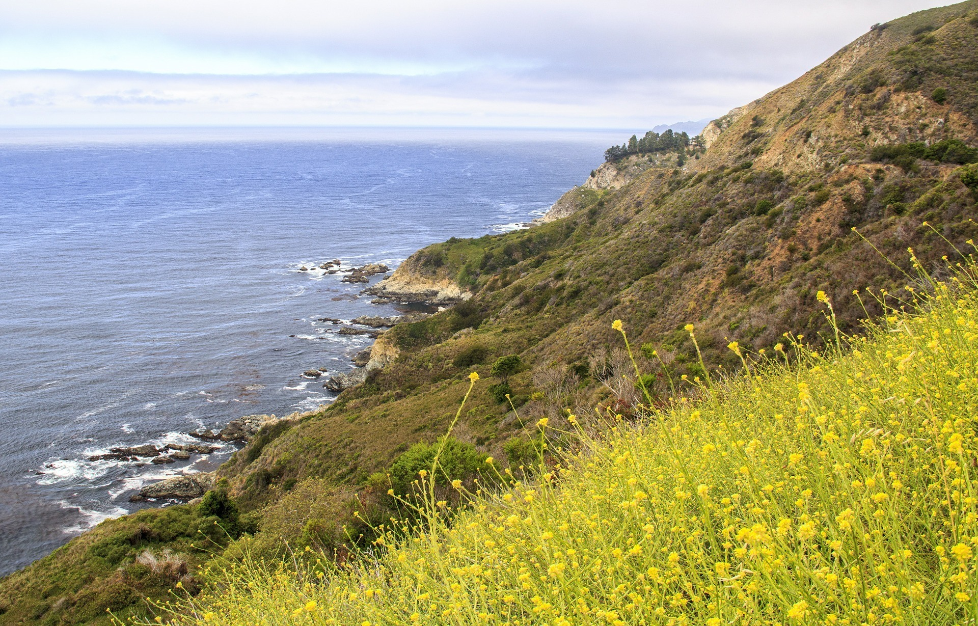 King City, Big Sur