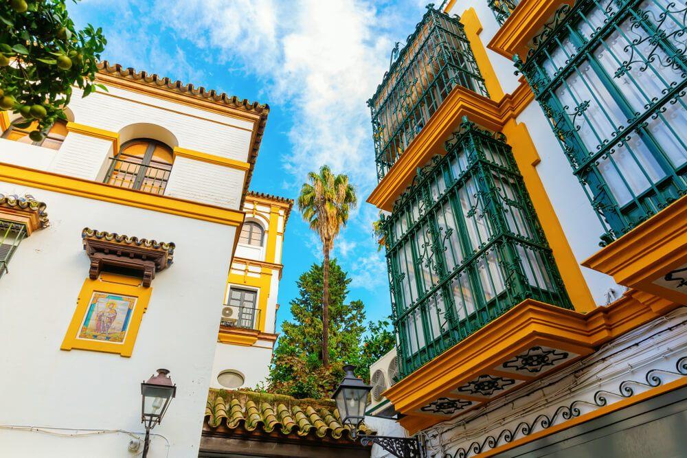 Santa Cruz ttd Seville