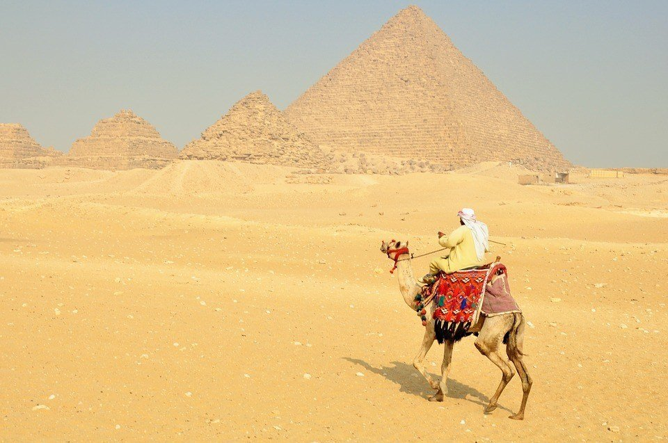 A solo camel trekker safe in Egypt
