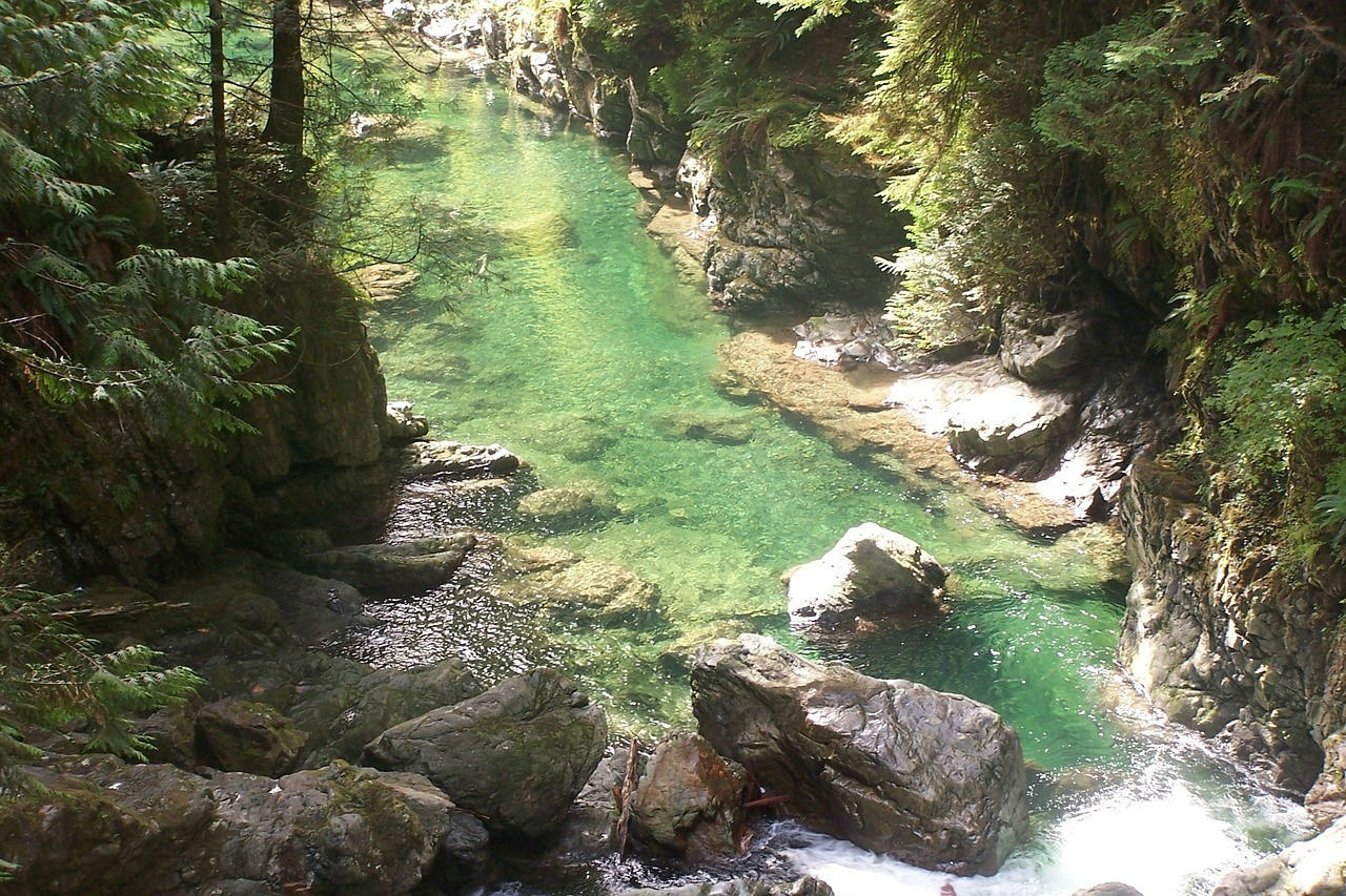 lynn canyon backpacking vancouver