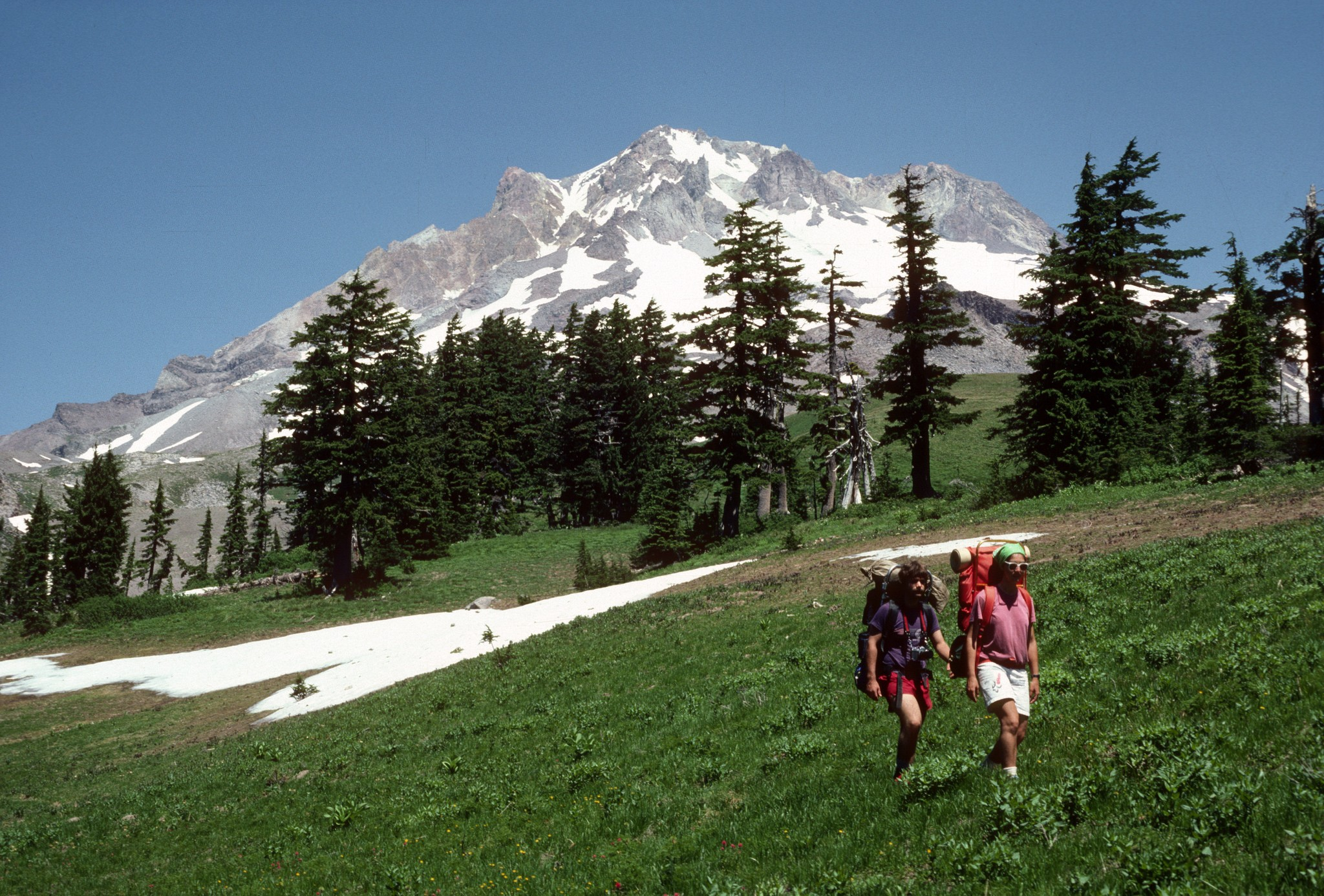 paradise park best hikes in oregon