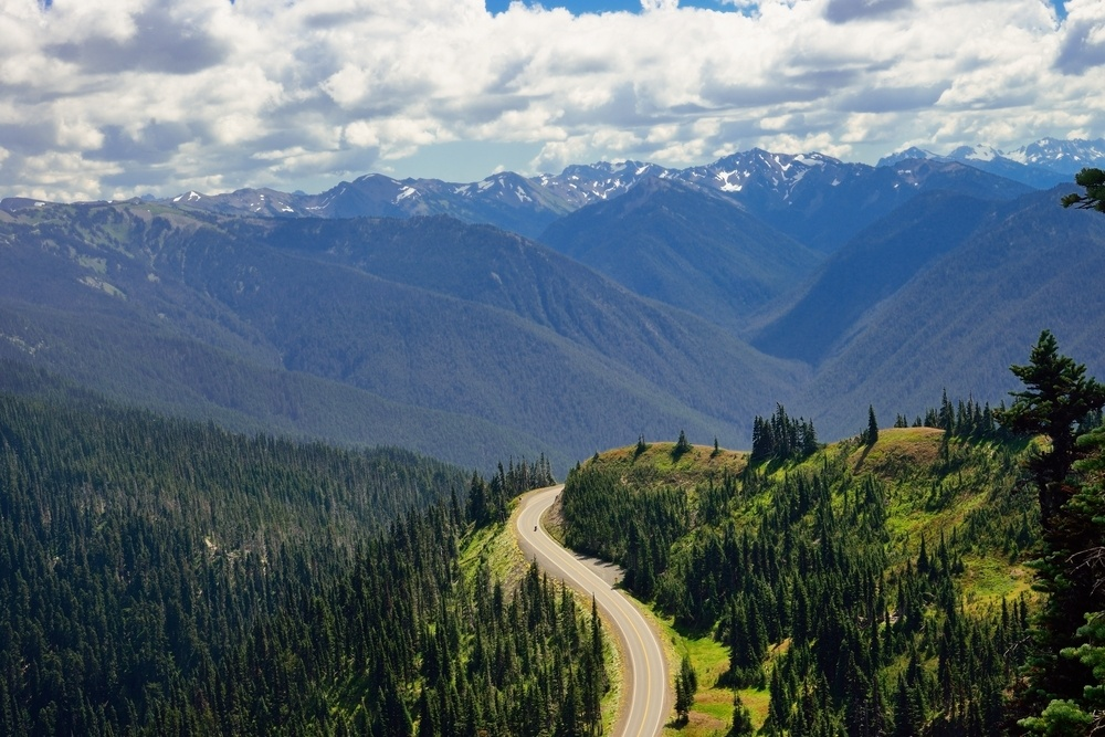 olympic national park hurricane ridge road washington state road trip