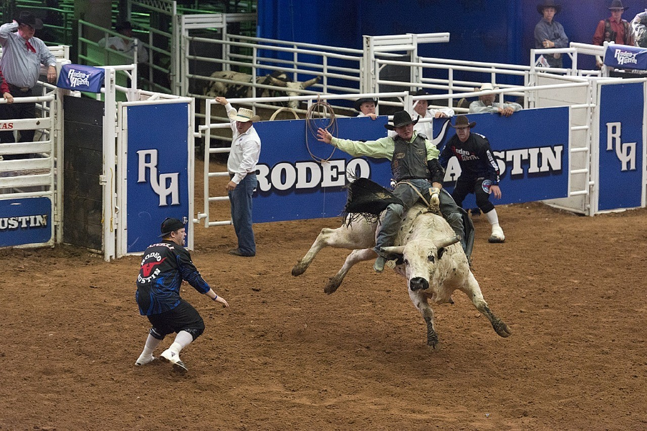 austin travel guide texas rodeo
