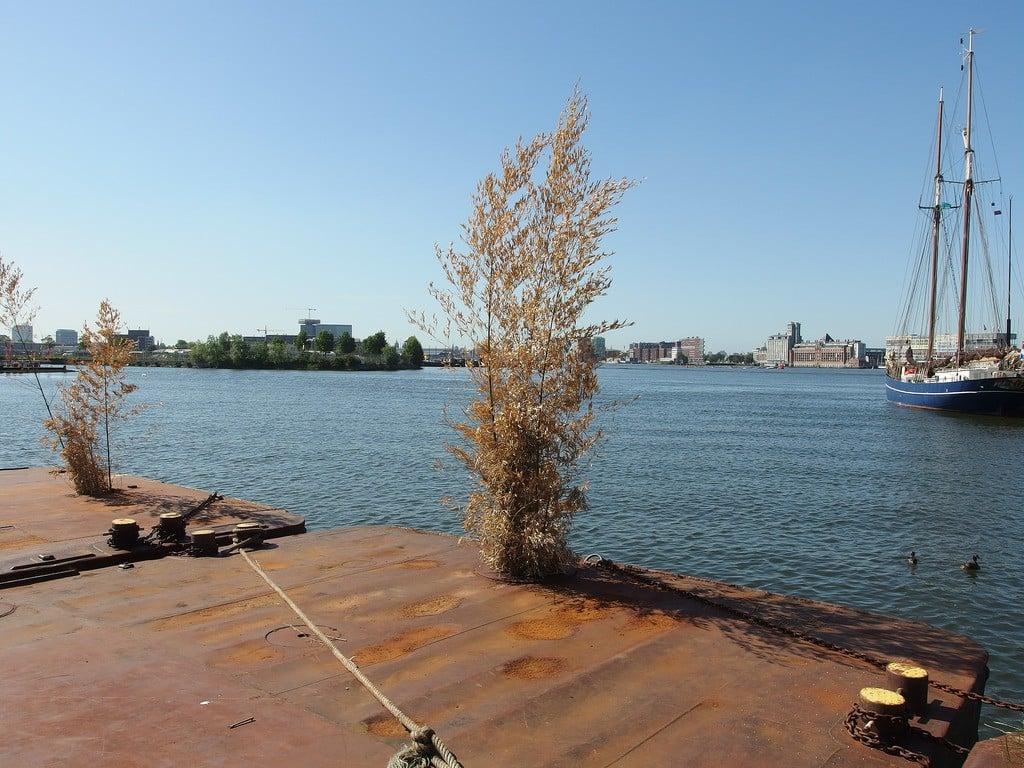 NDSM Wharf