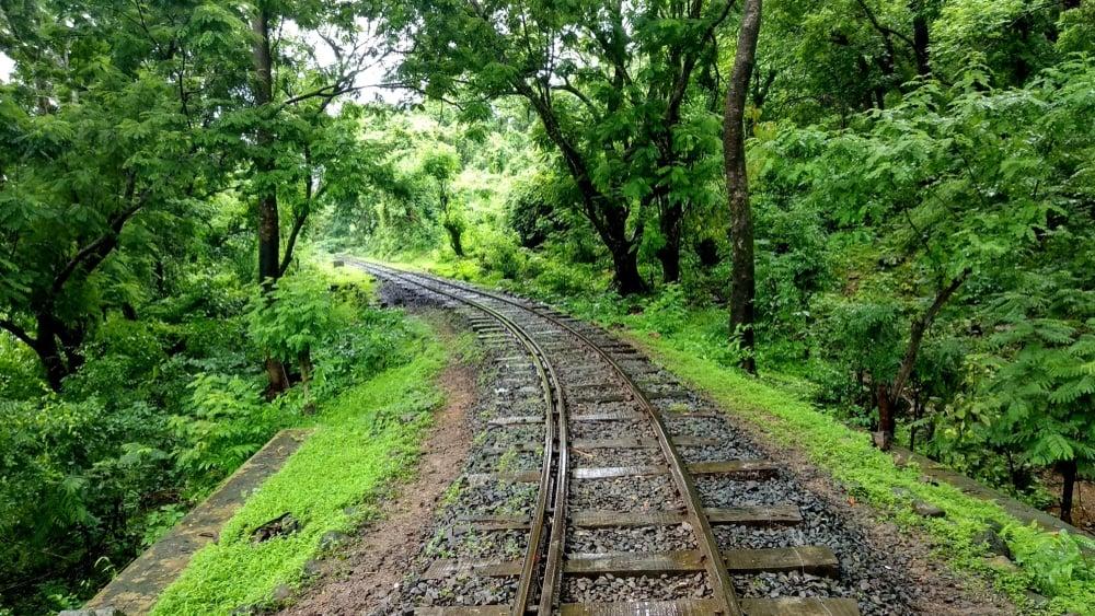 Sanjay Gandhi National Park mumbai