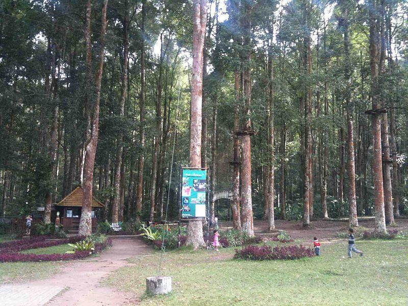 Bali in Treetop Adventure Park