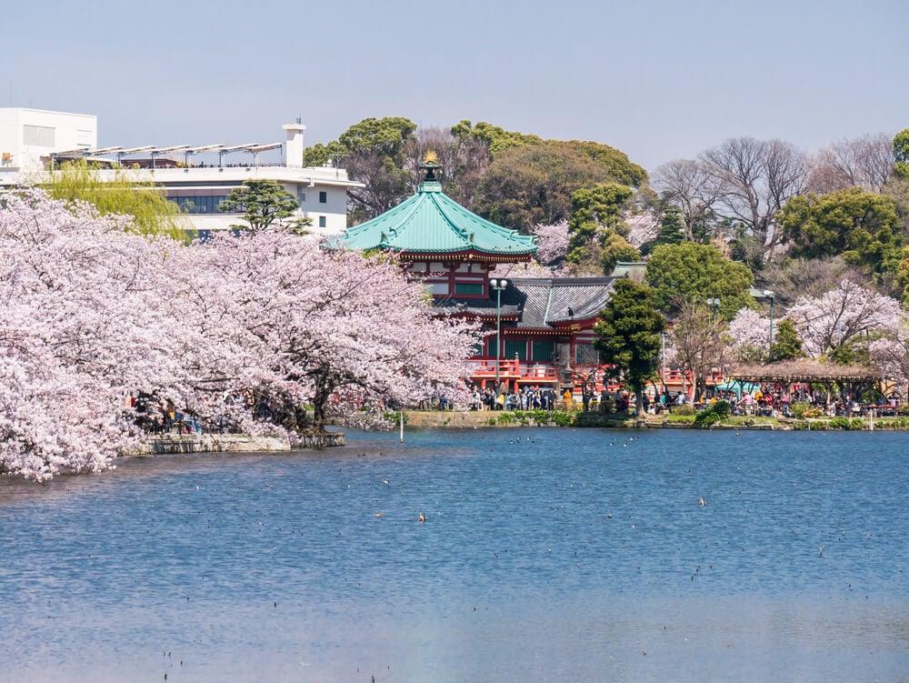Ueno Park Gardens