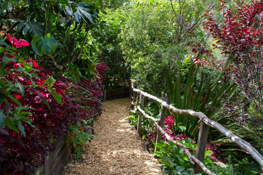 Wendy's Secret Garden - a beautiful place in Sydney