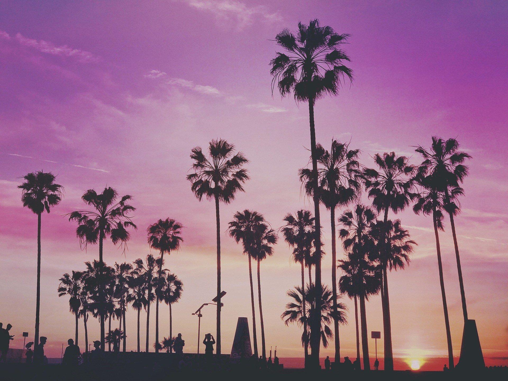 LA Safe to Live