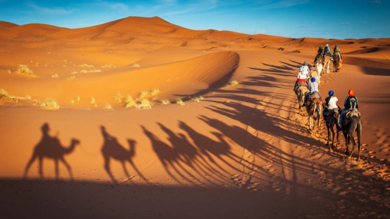 Evening Desert Safari Tour