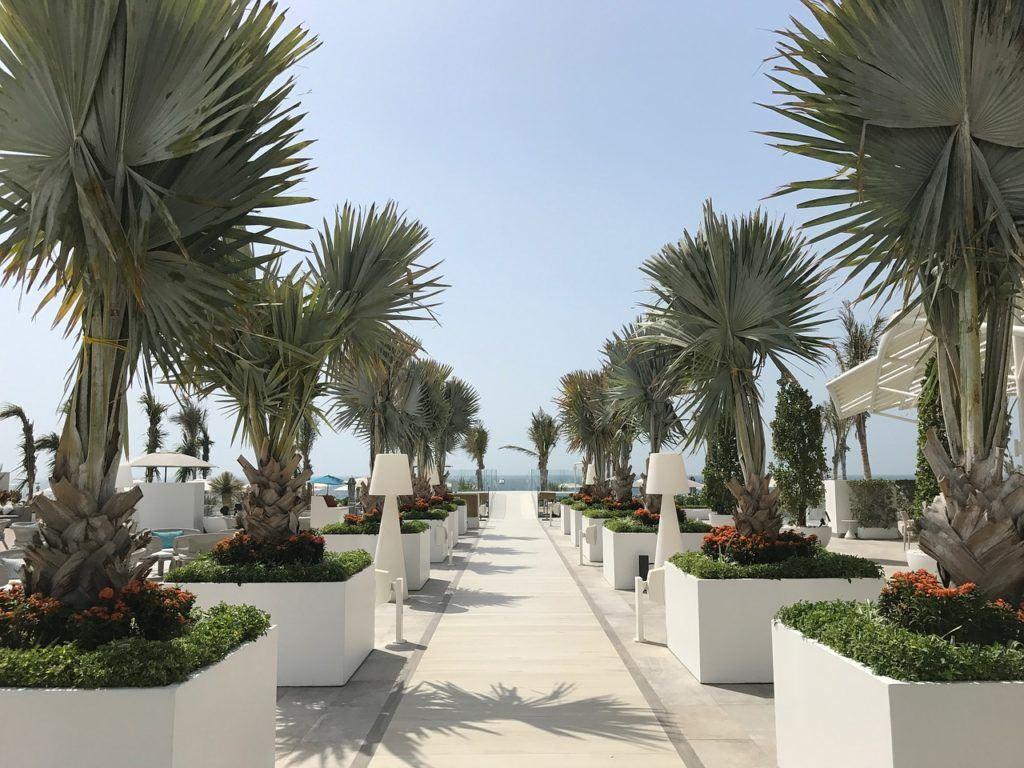 Explore the Palm Jumeirah Dubai
