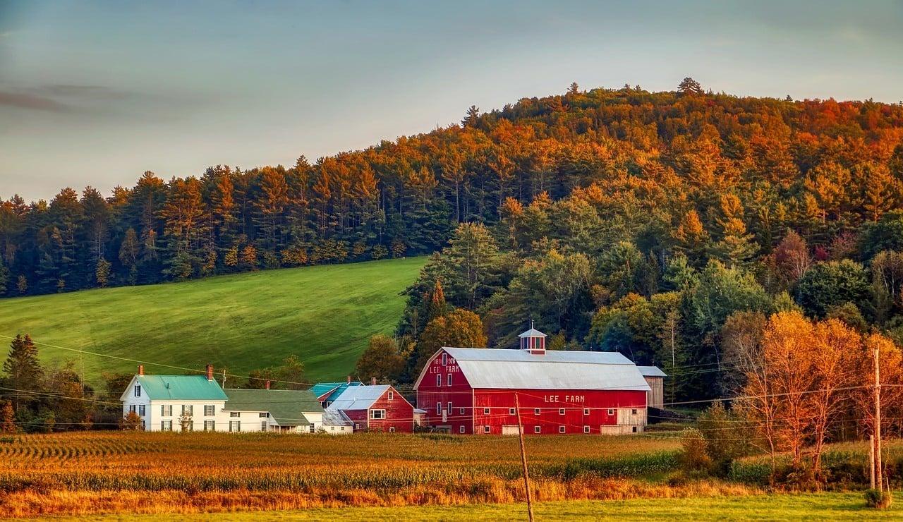 Farm Dairy New Hampshire New England America Barn