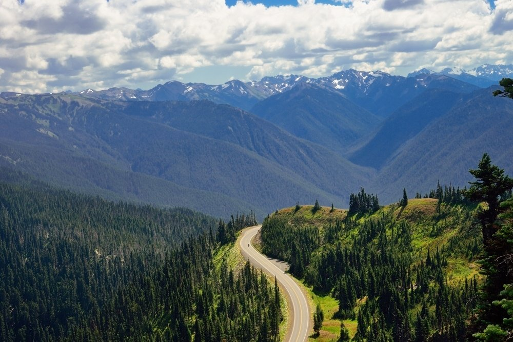 Hurricane Ridge - amazing northwestern USA road trip