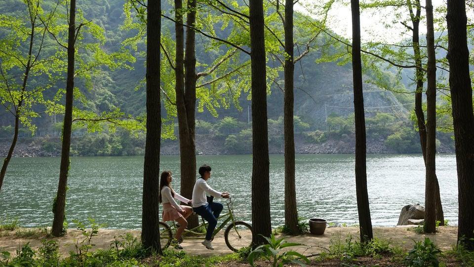 Nami Island, Korean Style Garden of Morning Calm & Rail Bike