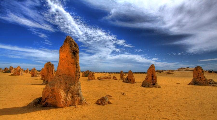 Pinnacles, Koala and Sandboarding Tour