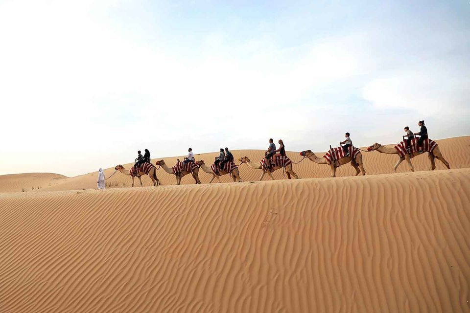 Red Dunes and Camel Rock Safari