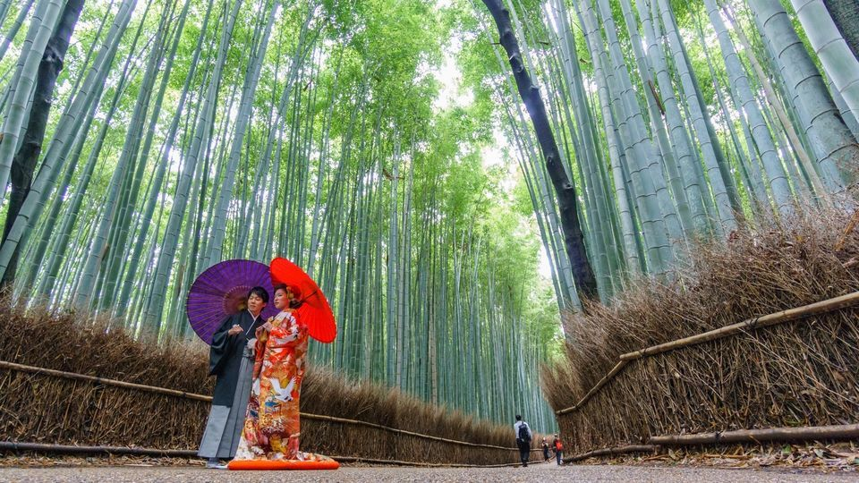 Bamboo Grove and Temple Tour