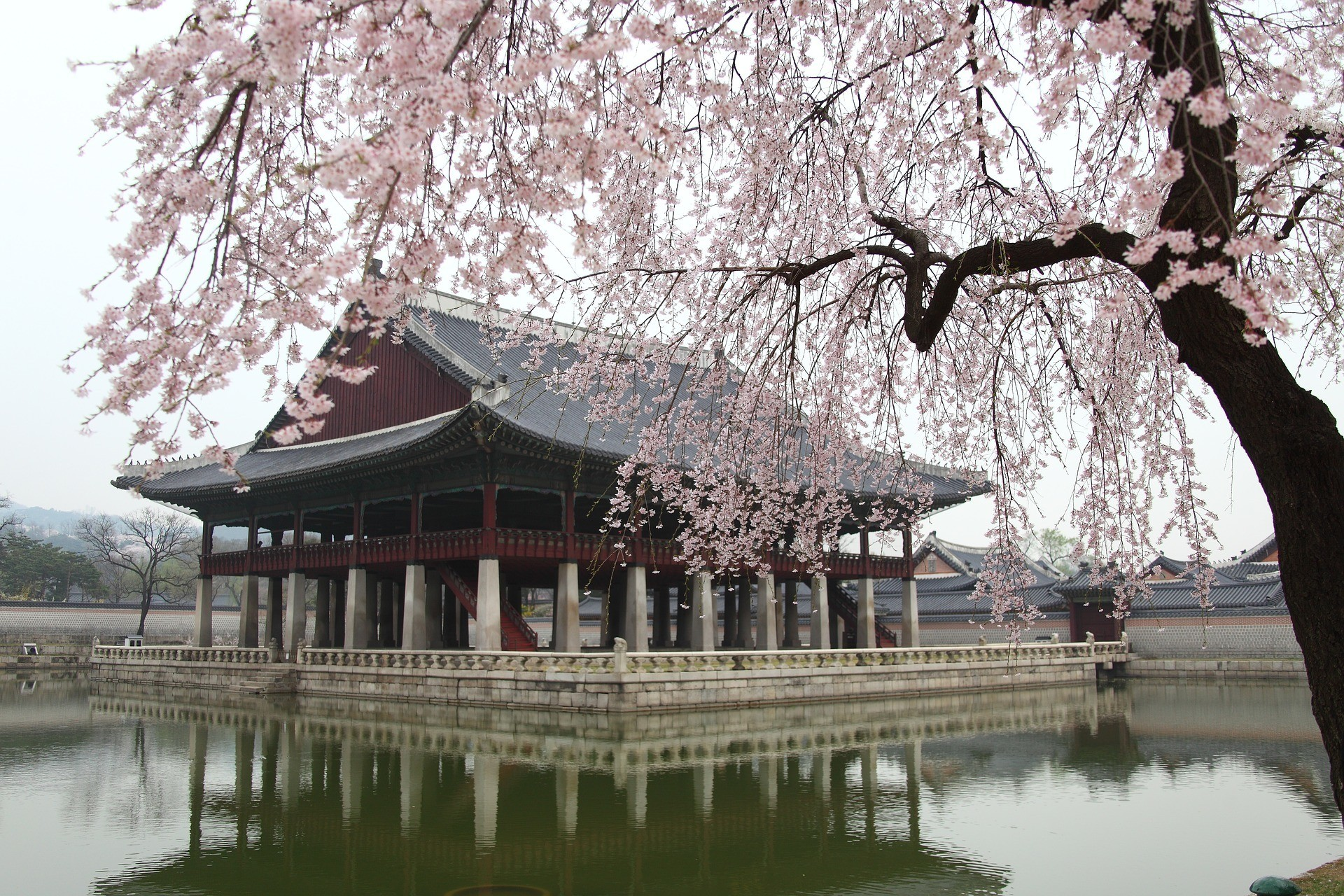 when to visit Seoul