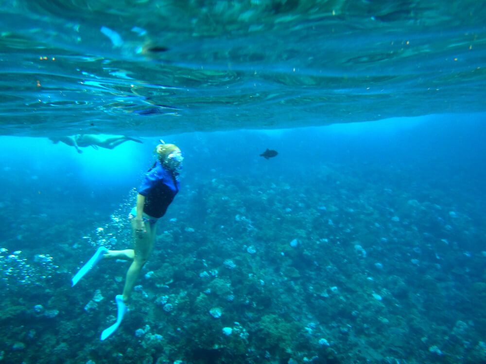 Snorkel to the Coral Gardens or the Molokini Crater