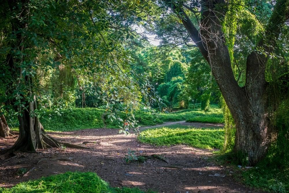 Parque Almendares Cuba