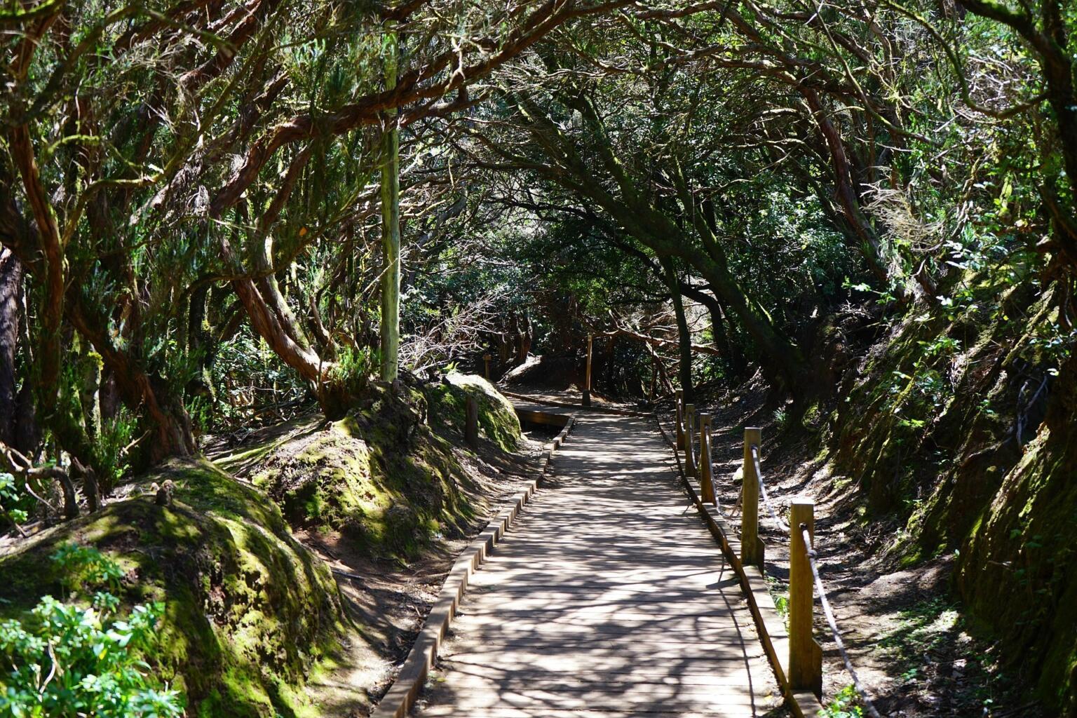 San Cristobal de La Laguna, Tenerife