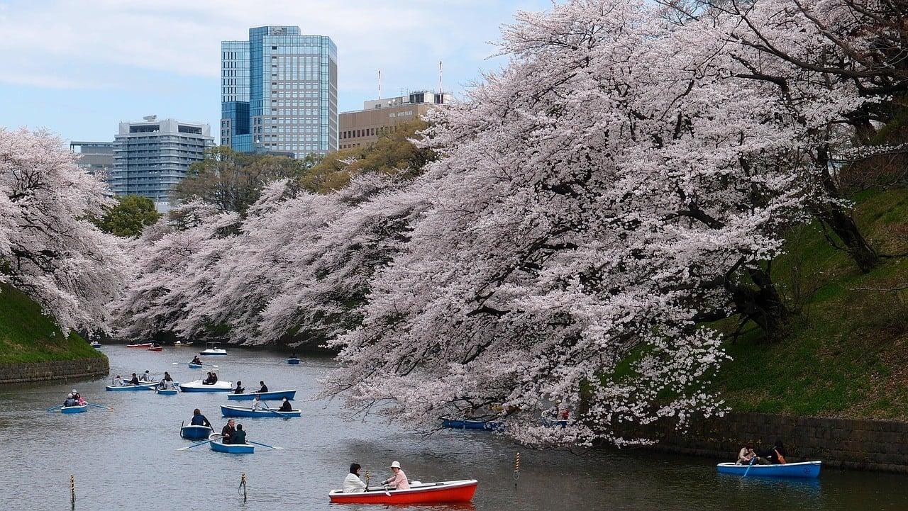 Tokyo Weekend Travel FAQs