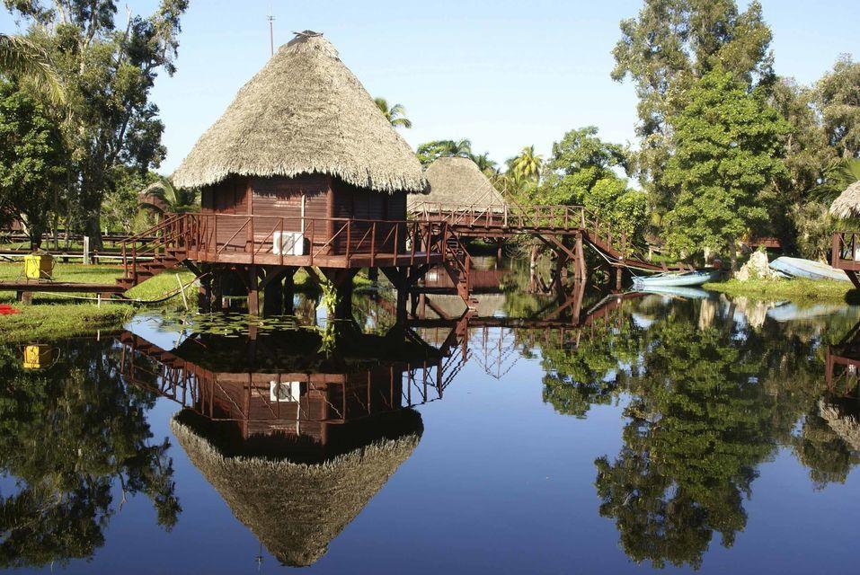 Tour to the Caribbean and Crocodile Farm
