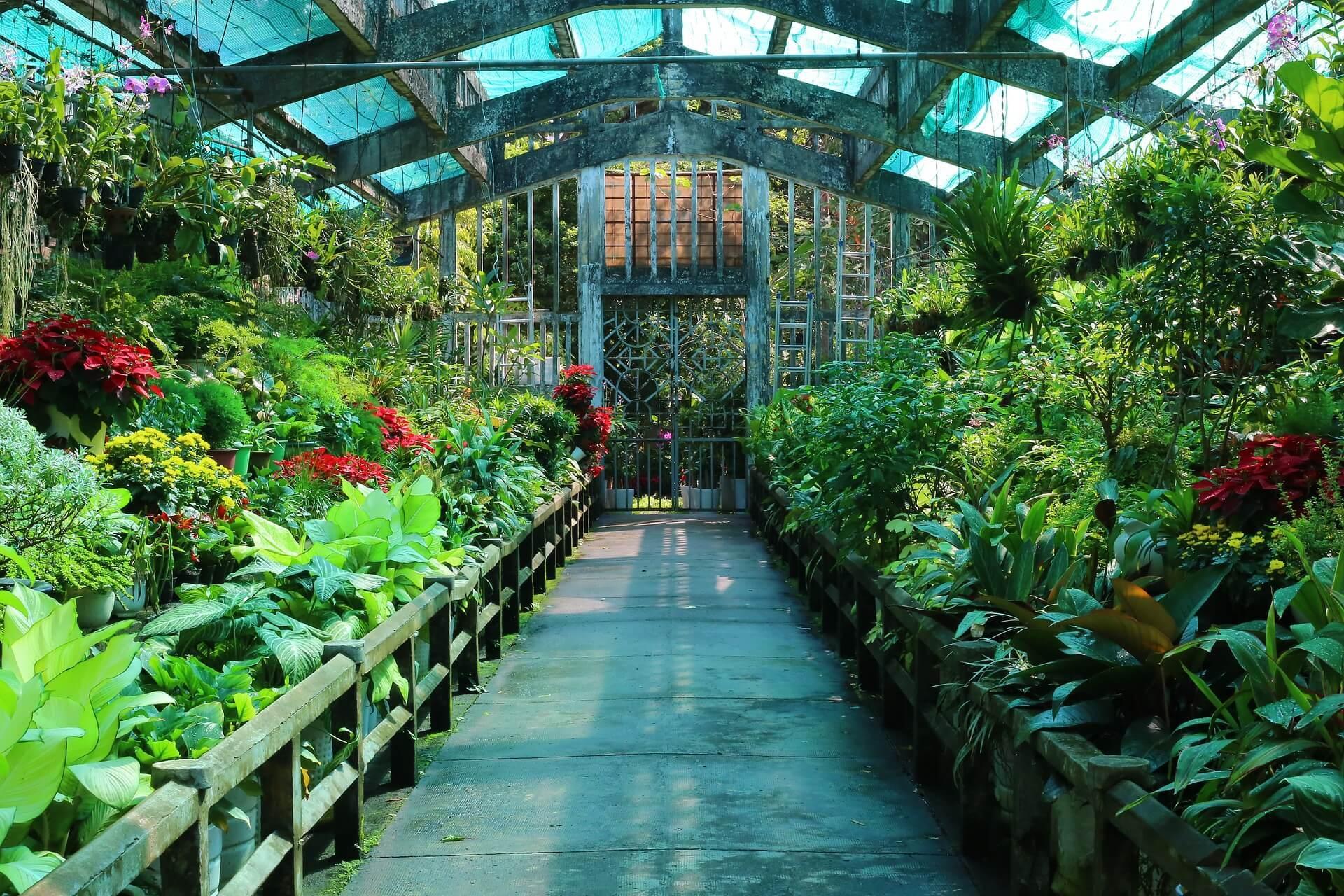 Botanical Gardens, Ho Chi Minh City