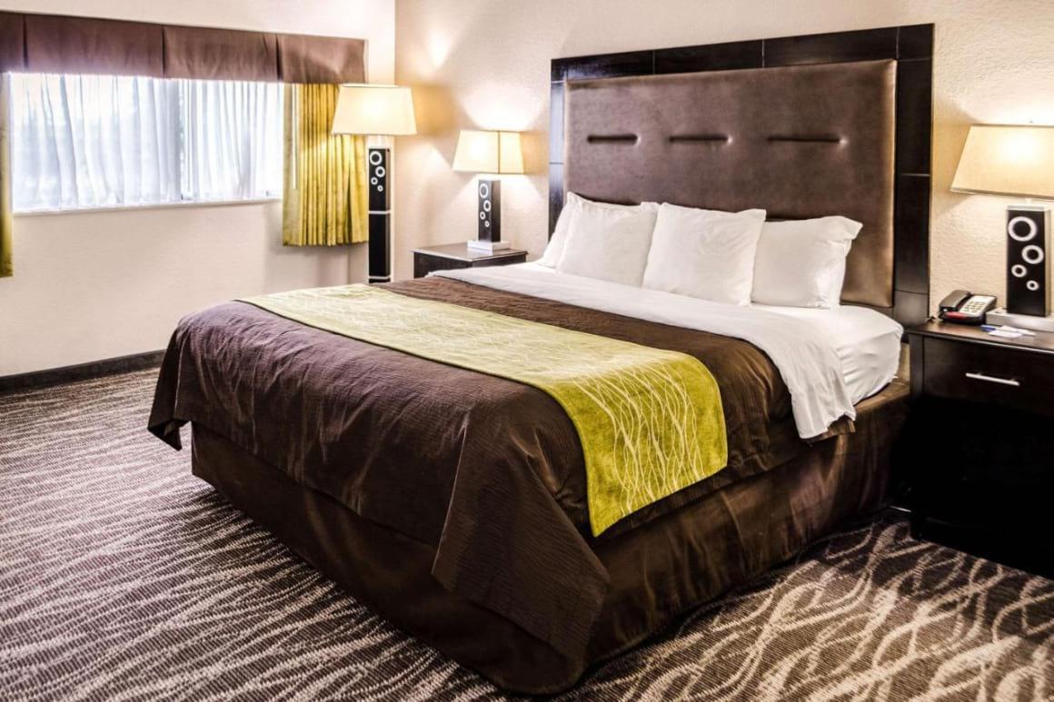 Comfort Inn Downtown Charleston