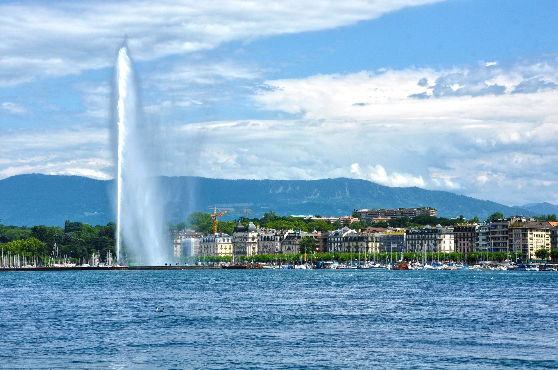 Eaux Vives, Geneva