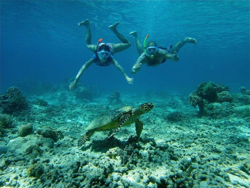 Full-Day Gili Island Snorkeling Day Trip from Lambok