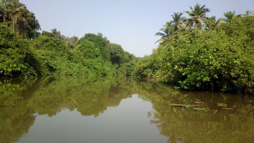 Goan Backwaters, Goa