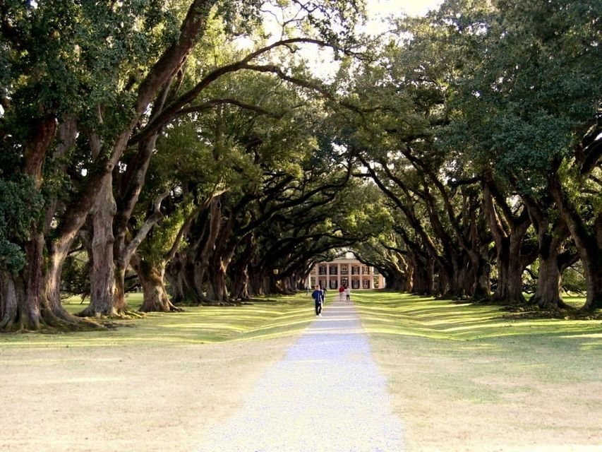 Louisiana Plantation Half-Day Tour