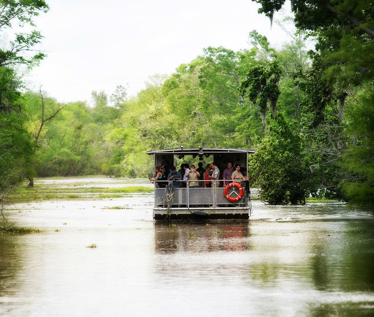 New Orleans Bayou Boat Tour