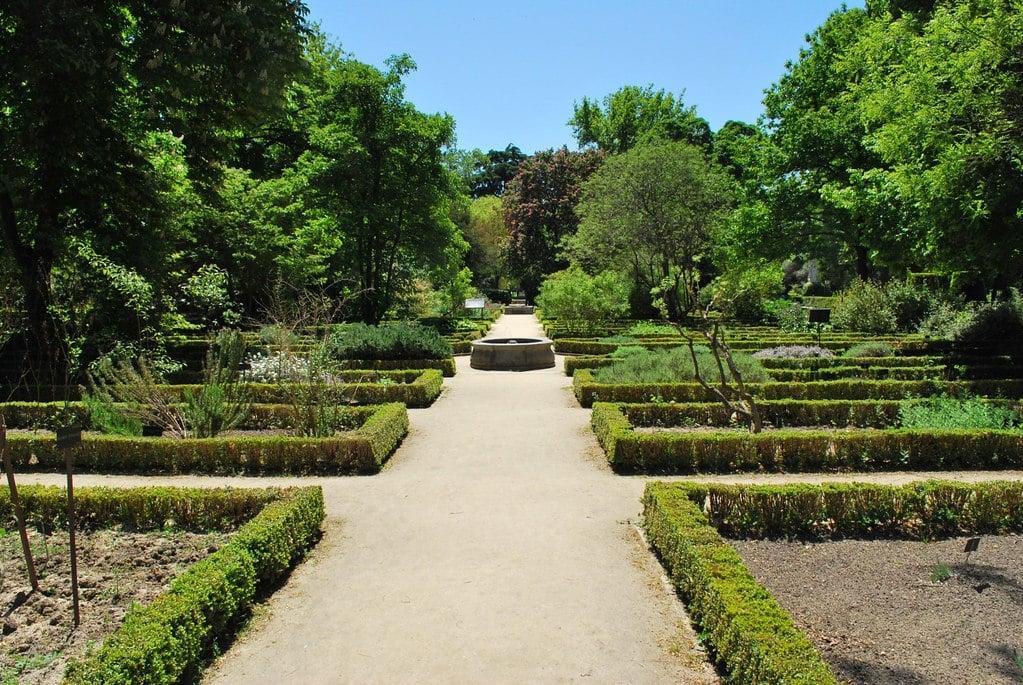 Real Jardin Botanico, Madrid