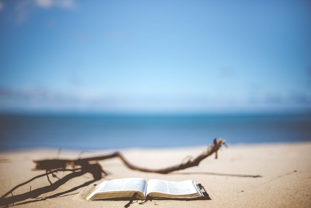 Reading a book at the beach is a free Sunshine Coast activity