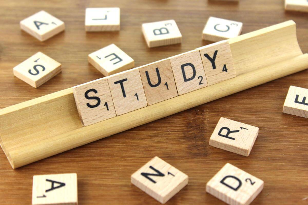 Hard study is ultimately the best way to learn a language