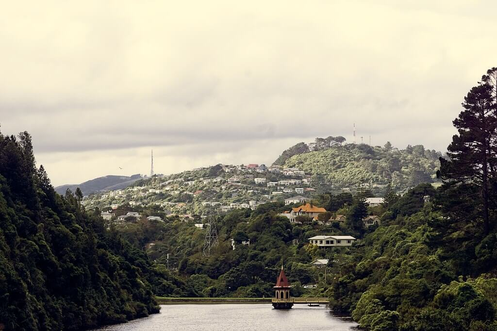 The view from Zealandia