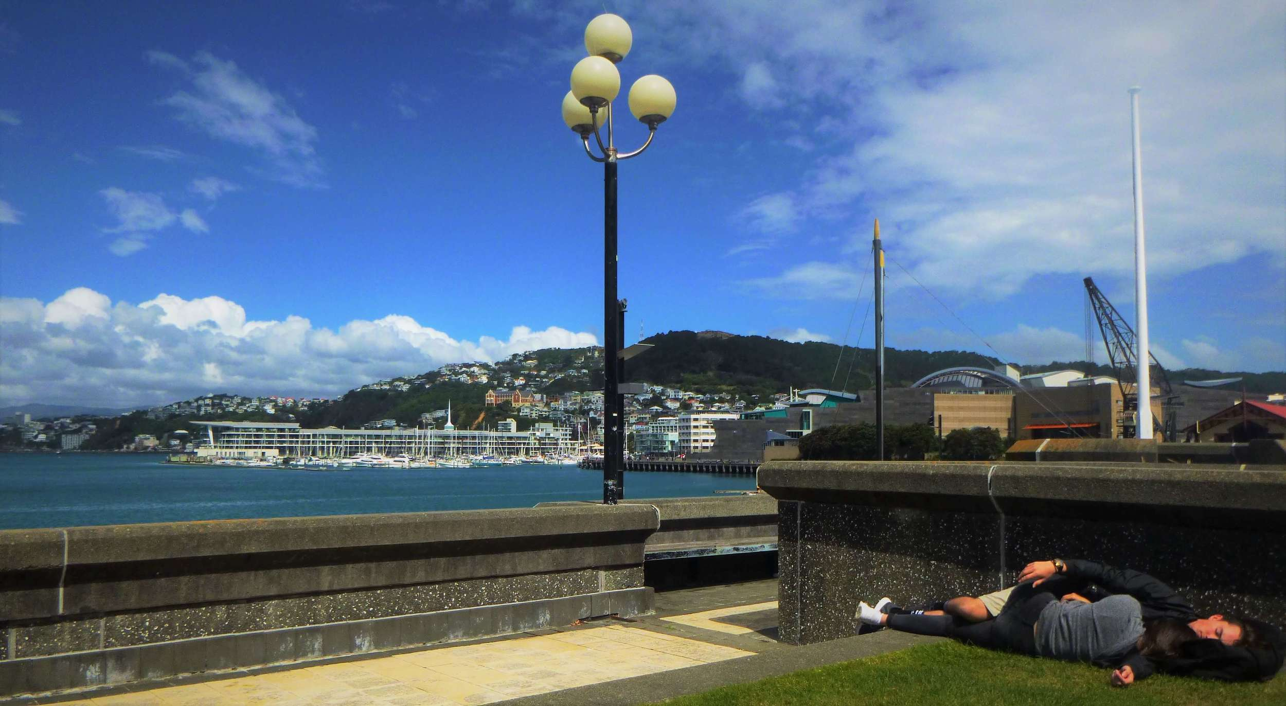Visiting Wellington's waterfront