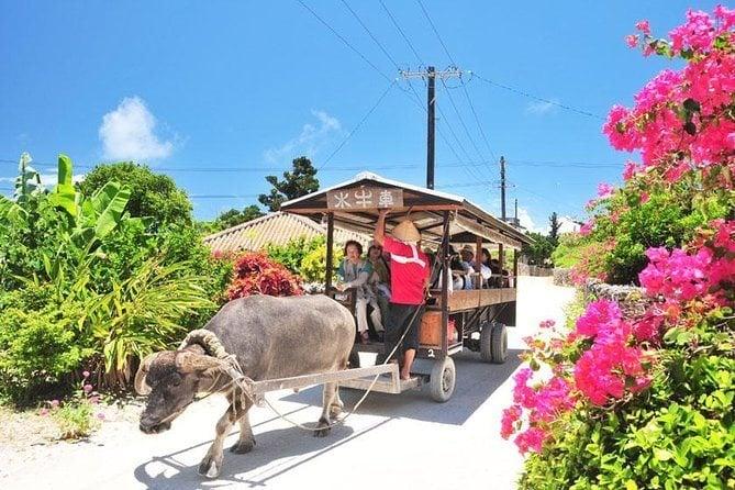 3 Island Day-Trip From Okinawa