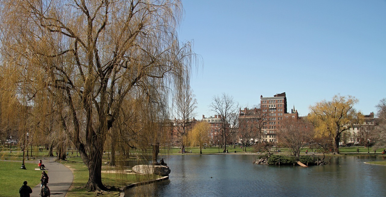 Relax at The Boston Public Garden and Boston Common