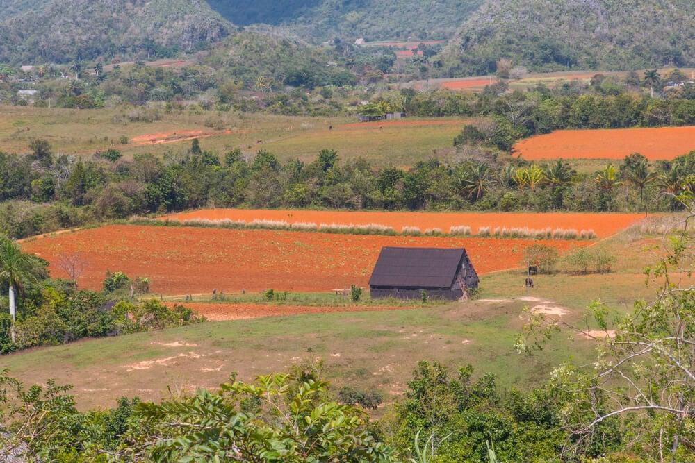 Finca Paraiso Agroecologica Vinales