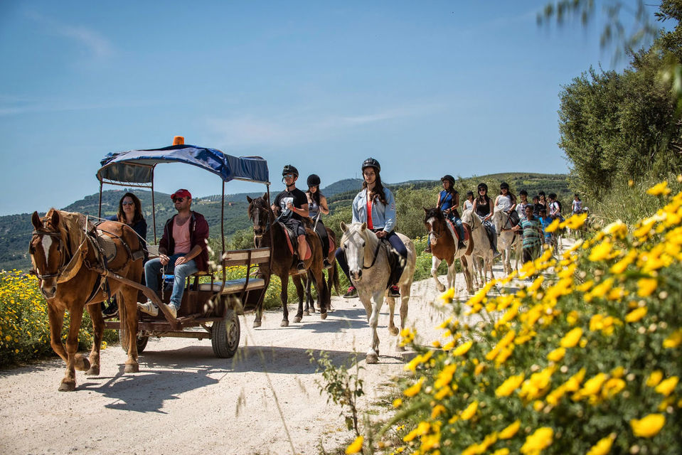 Horse Riding with Lunch in the Mountains near Heraklion