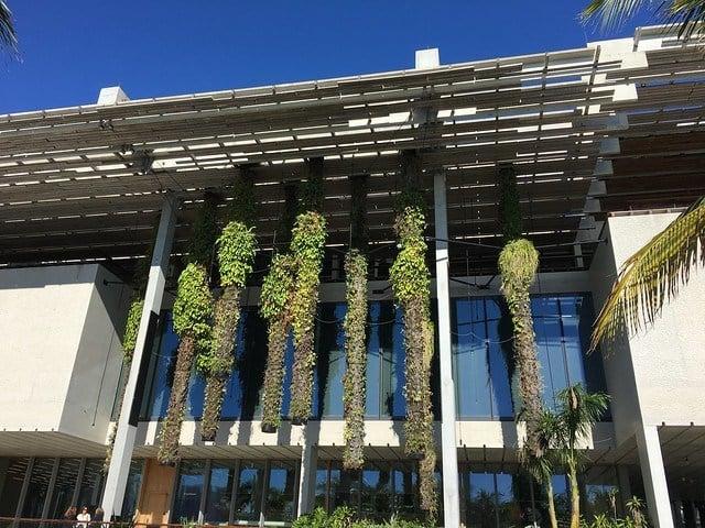 Perez Art Museum Miami 2
