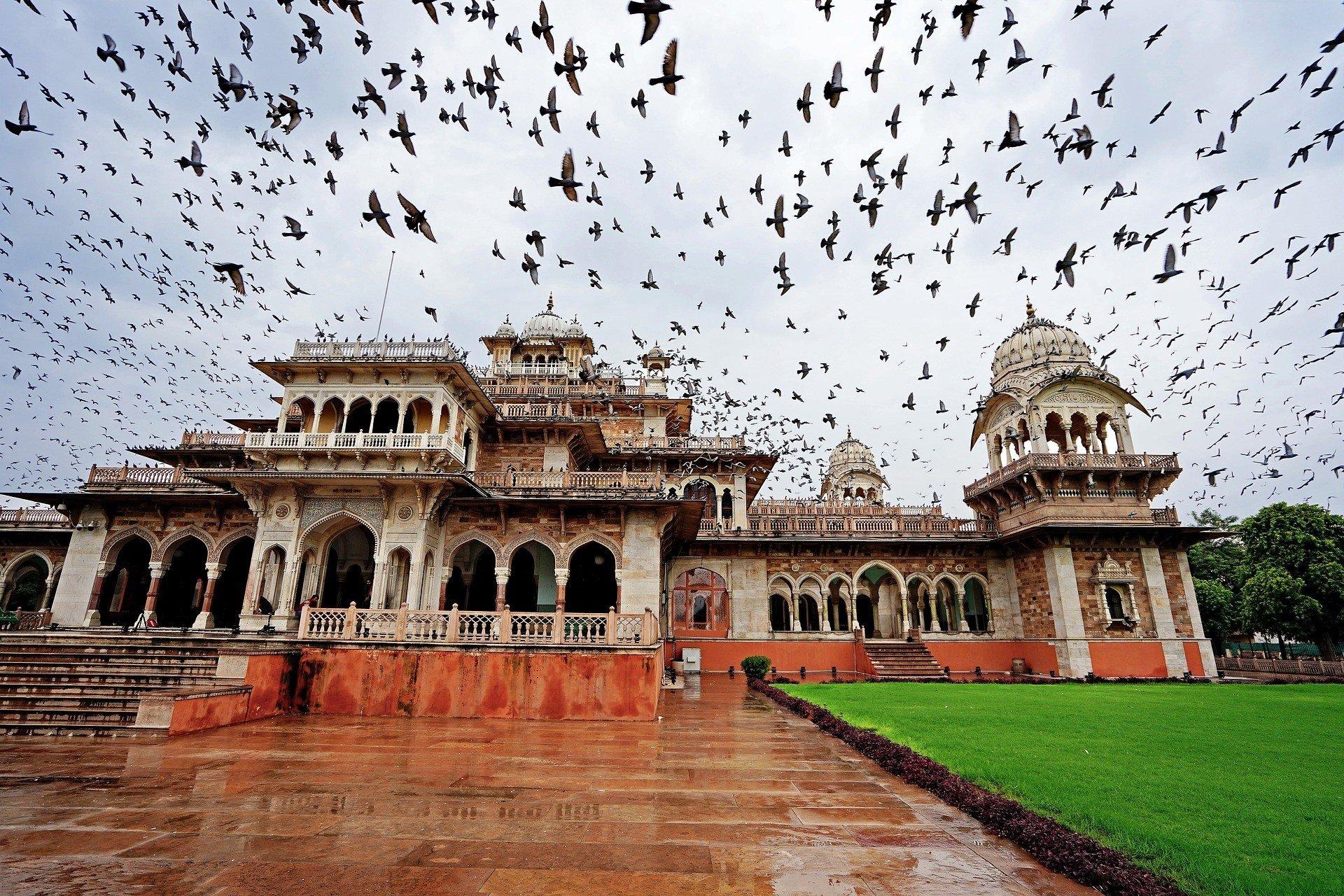 Raja Park, Jaipur