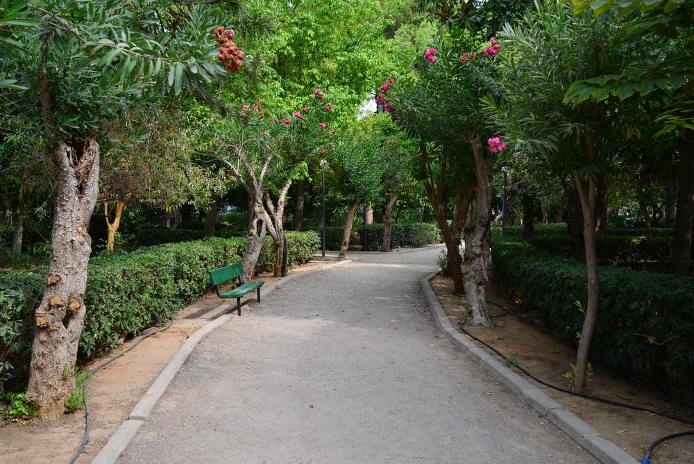 The Municipal Garden