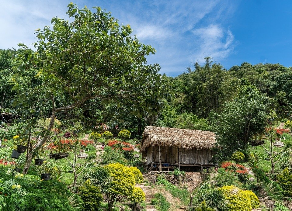 When to Visit Chiang Mai