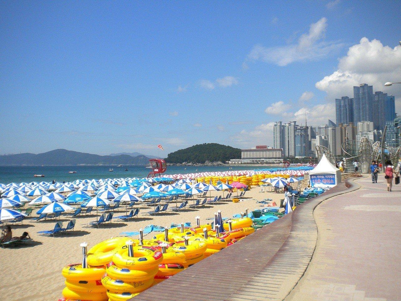 When to visit Busan