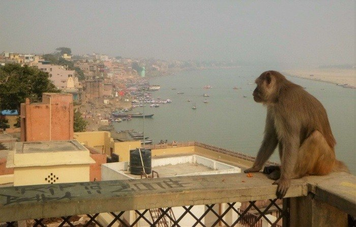 Varanasi is a good example of the necessity of water purification methods for third world countries