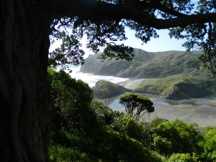 The southern West Coast completes the West Coast entry on the South Island itinerary
